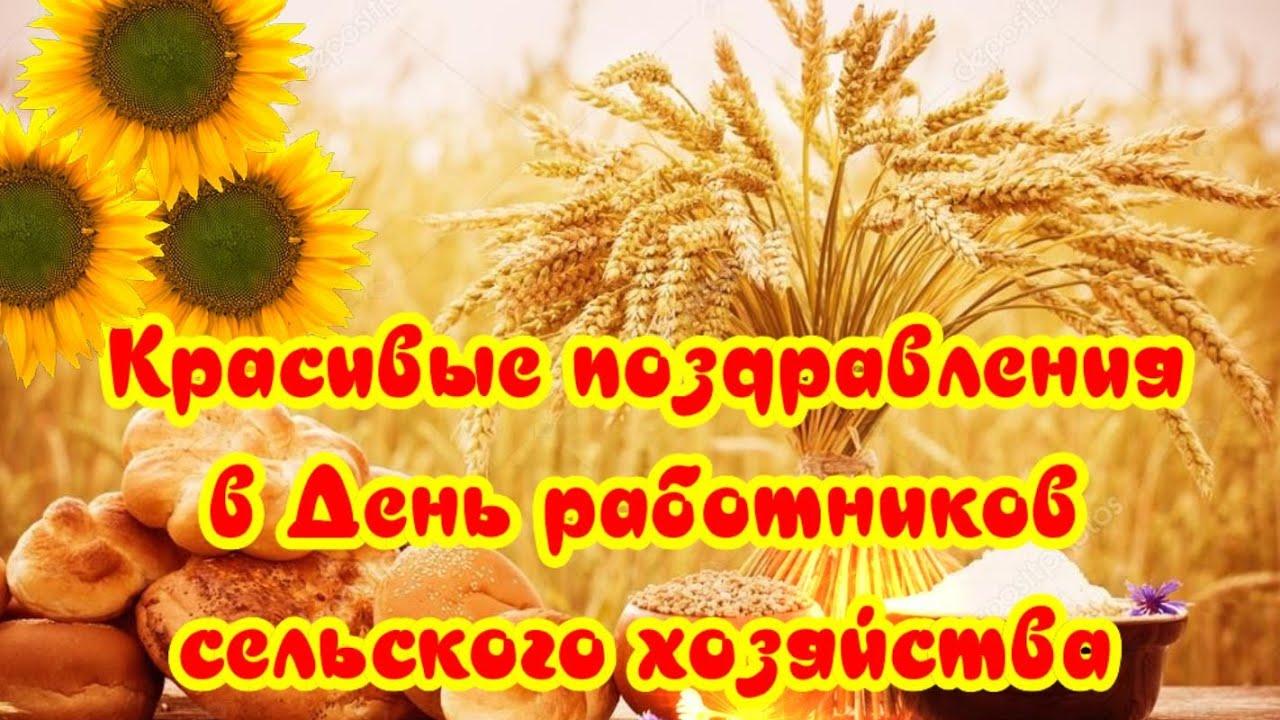 🌺Поздравления с Днем работников сельского хозяйства🌺красивые видео поздравления - видео открытка🍁