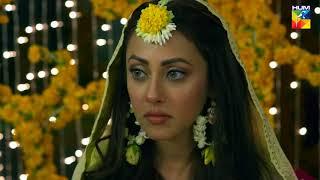 Tajdeed e Wafa Promo HUM TV Drama