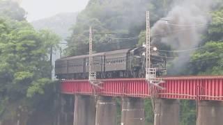 大井川鉄道 C11 + 旧型客車走行シーン