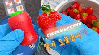 딸기도플갱어 옥소(OXO)딸기꼭지픽커 주방용품 장비템!…