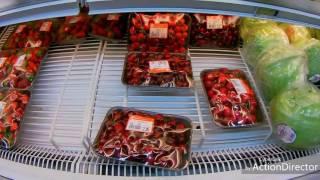 видео Испания, Таррагона: отдых, пляжи, шоппинг, достопримечательности