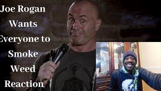 Joe Rogan Wants Everyone to Smoke Weed Reaction