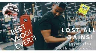 best vlog ever| YOUR AVERAGE GUY |2019 vlog | INDIAN VLOGGER | VADODARA |