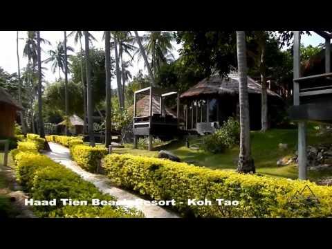 Haad Tien Beach Resort - Koh Tao ( Thian Og Bay ) @ Thailand