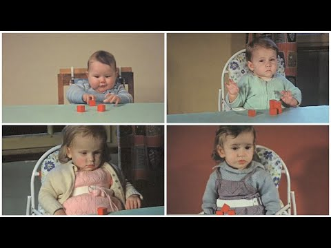 1965. Effect of emotional deprivation and maternal neglect. Subtitled in English
