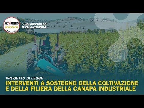 Progetto di Legge sulla filiera della canapa in Lombardia from YouTube · Duration:  2 minutes 16 seconds