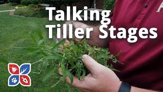 Do My Own Lawn Care - Talking Tiller Stages
