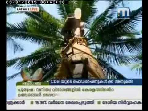 Kera Varthakal 3-1-15 Neera licence to 173 Coconut producer federations