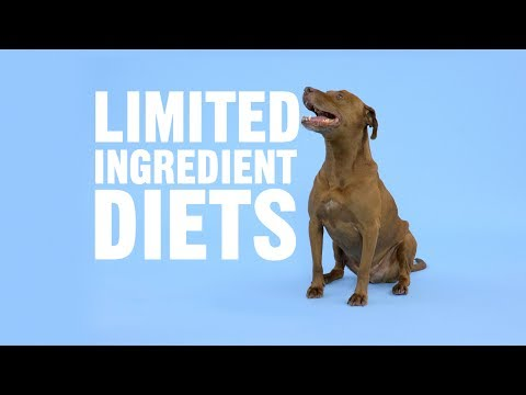 what-are-the-benefits-of-a-limited-ingredient-diet?-|-chewy