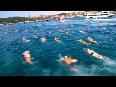 Bosphorus Cross Continental Swimming Race