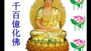Qing Jing Fa Shen Fu - Zhuan Yan Hao Ting Budha Song