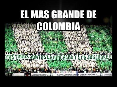 El más grande de Colombia | La Banda Los Del Sur | Atlético Nacional [LETRA]