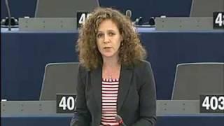Sophia in 't Veld on the principle of subsidiarity