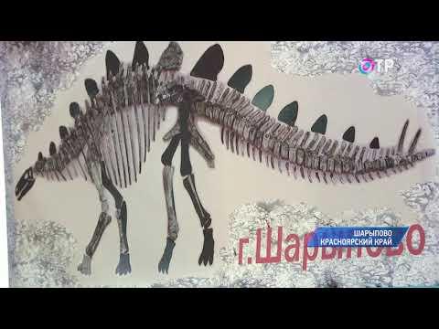 Малые города России: Шарыпово - Мекка палеонтологов