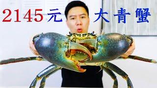 2145买一只斯里兰卡大青蟹,全网最大,钳子比胳膊还粗,非常霸气【小文哥吃吃吃】