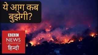 (INDIA, July 2018) Deadly Forest Fires killed Many (BBC Hindi)