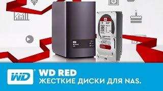 WD Red. Жесткие диски для NAS.(Накопители WD Red созданы специально для систем NAS, имеющих от 1 до 8 отсеков для 3,5-дюймовых или 2,5-дюймовых..., 2015-03-12T12:56:13.000Z)