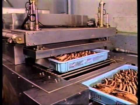 わたしたちの海・おだわらの水産業(1989)2_2
