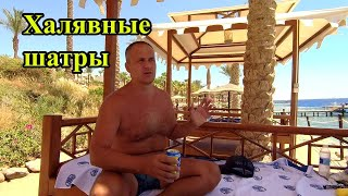 Халявные шатры на пляже Grand Rotana Resort Spa 5 Египет Ужин и анимация Крабы Снорклинг