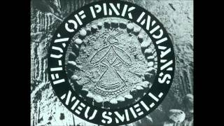 Flux Of Pink Indians - Tube Disasters