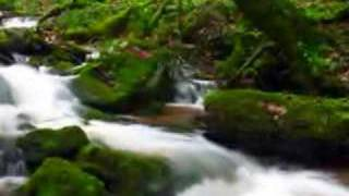 Creeks & Cascades (HQ) - Will Ackerman