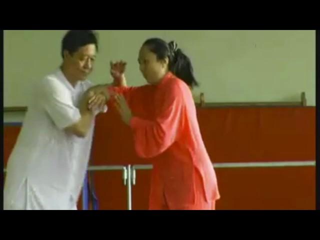 Zheng Xudong et Shen Zhen Jun - Tai Chi style Chen Laojia [陈氏太极拳老架 Taijiquan style Chen]