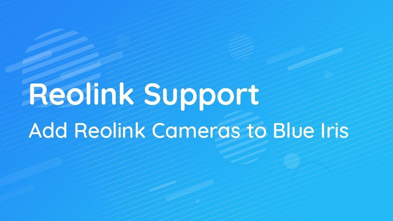 Blue Iris IP Cameras — Top 2 Picks, Step-by-Step Setup Guide