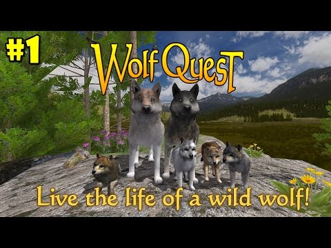 WolfQuest Mobile 2.7.2 Multiplayer- Android/iOS/Kindle - Gameplay Episode 1