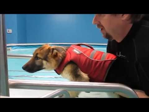 Liesel Goes for Water Therapy