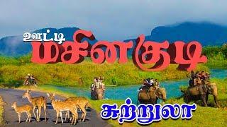 மனதை மயக்கும் மசினகுடி விபத்து I சுற்றுலா I Masinagudi Trip I Ooty to Masinagudi Trip
