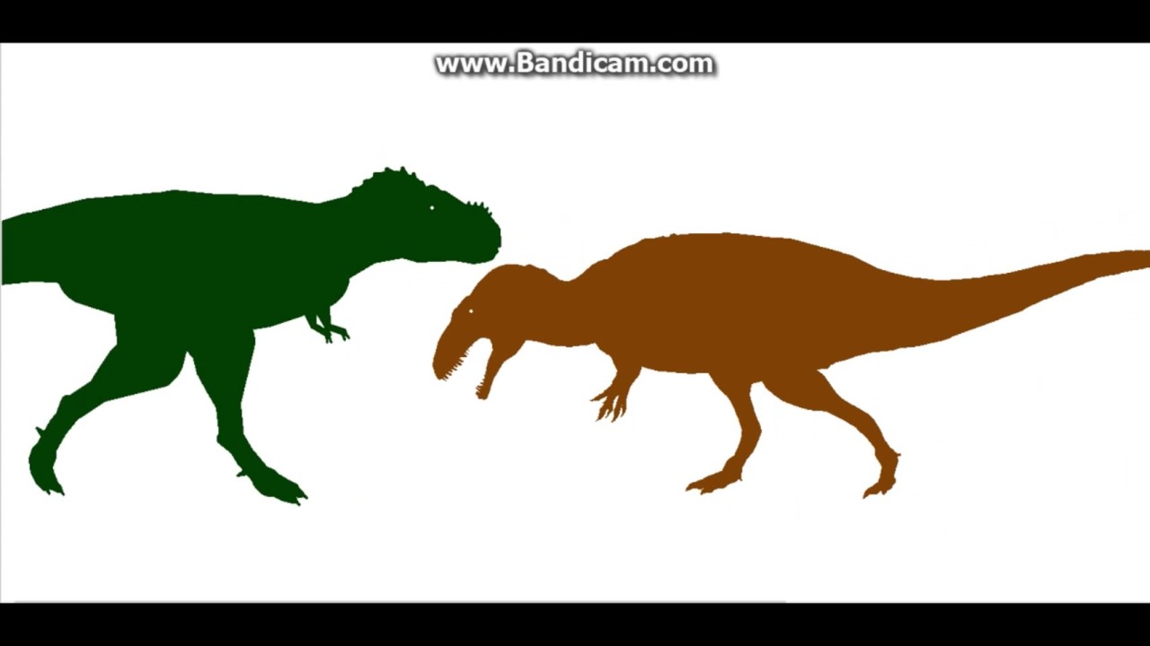 how to draw spinosaurus vs t rex