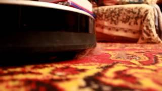 Уборка кошачьей шерсти роботом пылесосом