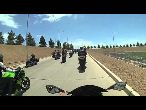 Big Dog Run At Glendale Arizona