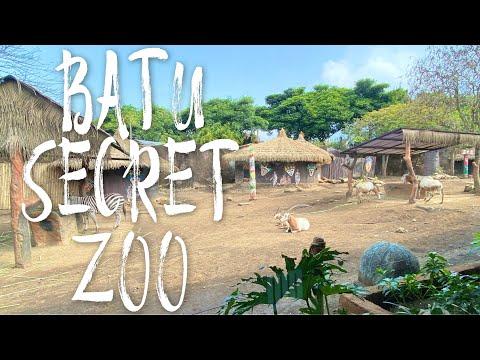 [4K] Batu Secret Zoo - 4K Virtual Walking Around Batu Secret Zoo Jatim Park 2, Indonesia