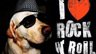 13 апреля Всемирный день рок-н-ролла