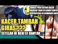 Kacer Tambah Giras Setelah Di Beri Ef Banyak Tips Kacer Giras Mh Agar Jinak Dr Kacer  Mp3 - Mp4 Download