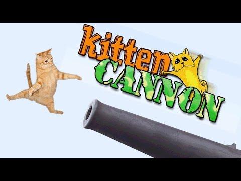 KITTENASTROPHY  -Kitten Cannon | Casual Friday