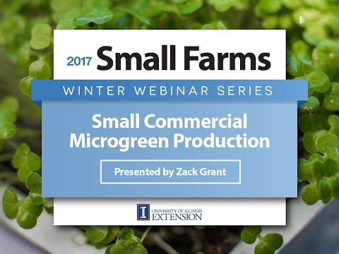 Small Commercial Microgreen Production - Zack Grant - University of Illinois Extension