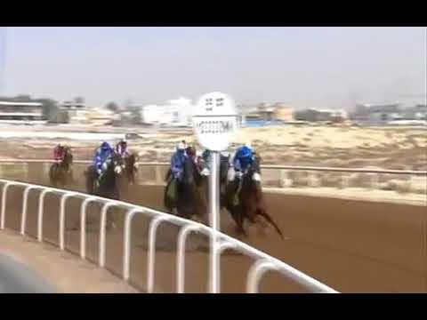 Jebel Ali 23/02/2018 Race 2
