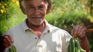 Mercado de orgânicos no Nordeste é o segundo maior do Brasil