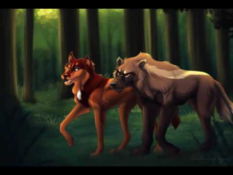 Anime wolves lost boy