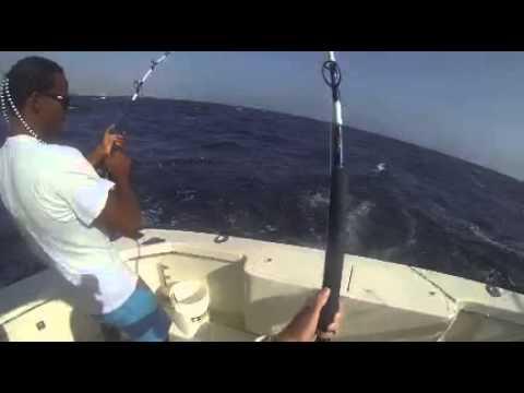 Fishing On The Driftwood In Aruba
