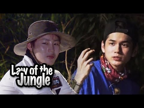 What Song By Wanna One Suits the Jungle? [Law of the Jungle Ep 328]