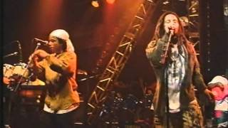 Ziggy Marley & The Melody Makers - Rainbow Country - Feb 3 1992 Music Hall Frankfurt, Germany