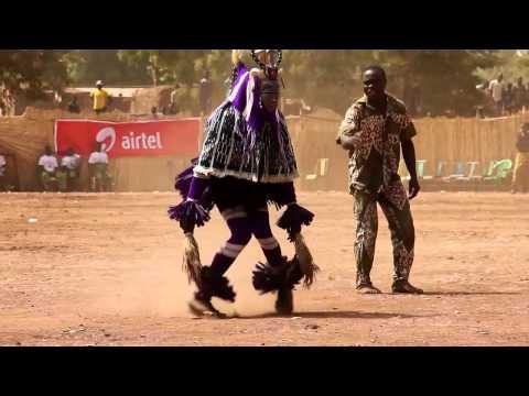 African Pendulum Tarantula cover