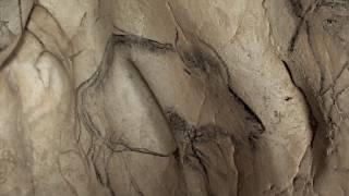 La Cueva de los Sueños Olvidados (Werner Herzog, 2010) Subtitulado