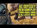 Assassin's Creed Odyssey Gameplay TAMING & PETTING ANIMAL, XP Boost & More! (AC Odyssey Gameplay)