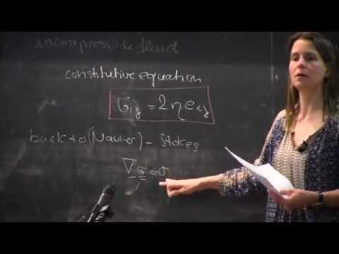 Professor Anke Lindner lecturing at CISM