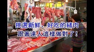 【健康養生】挑選新鮮、好吃的豬肉,跟著達人這樣做就對了!