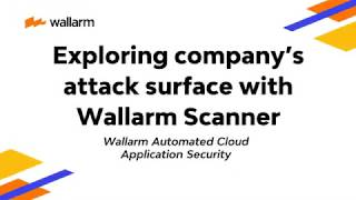 Wallarm Platform Demo: Exploring company's attack surface with Wallarm Scanner